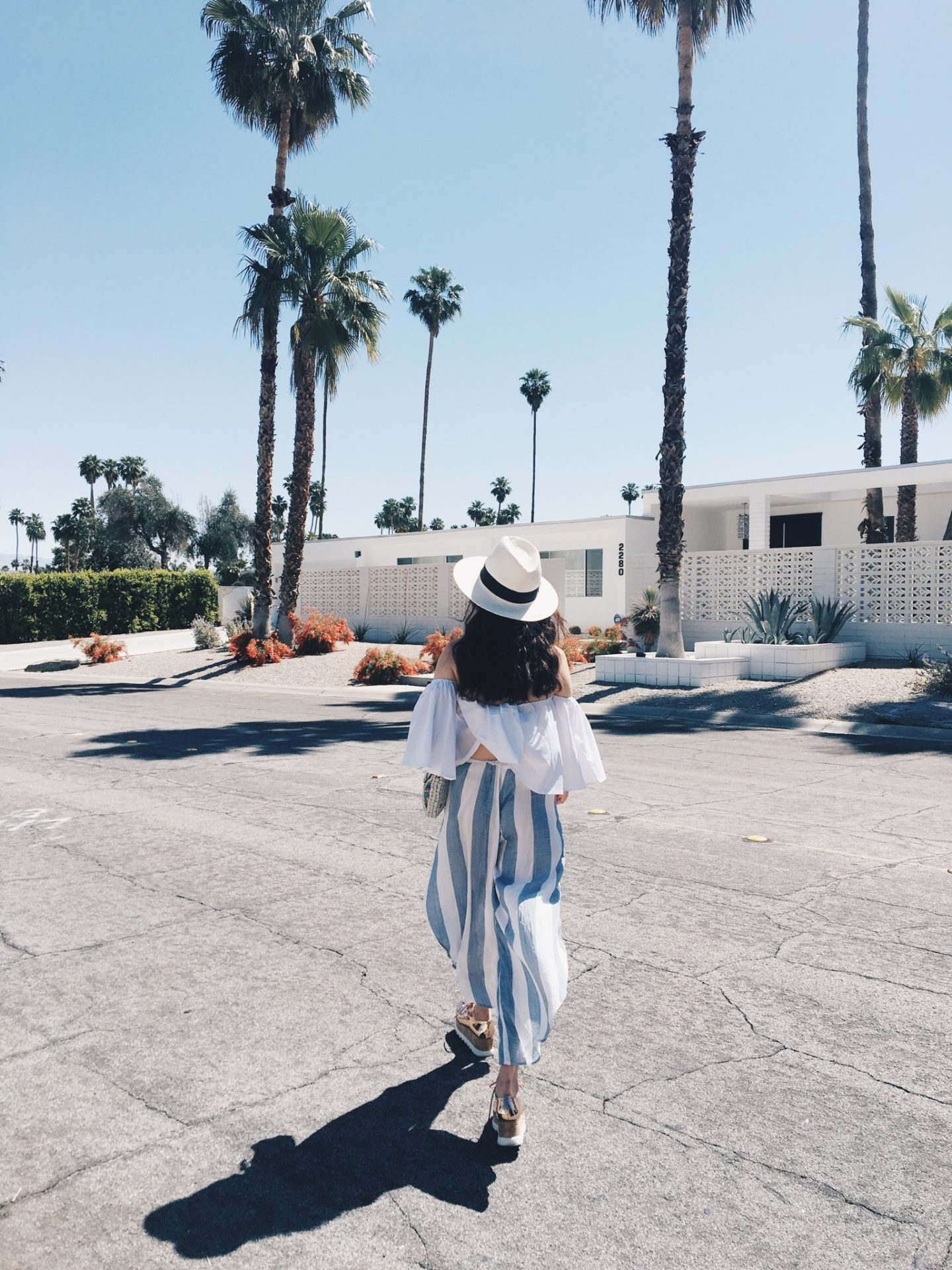 Coachella Survival Guide: Tips, Travel, & Everything you